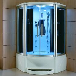 Mesa 609P Steam Shower