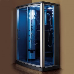 Mesa 803L Steam Shower