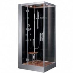 Platinum DZ960F8 Steam Shower
