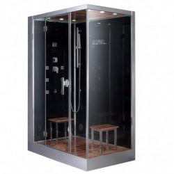 Platinum DZ961F8L Steam Shower