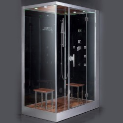 Platinum DZ961F8R Steam Shower