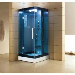 Mesa WS-303A Steam Shower